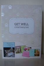 CURIOUS KITTENS GET WELL CARDS BOX SET- 12 FOILED CARDS & ENVELOPES * 4 DESIGNS