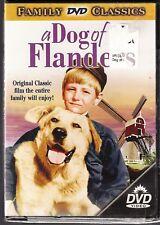 BRAND NEW DVD ~ A DOG OF FLANDERS ~ 2002 ~ DAVID LADD