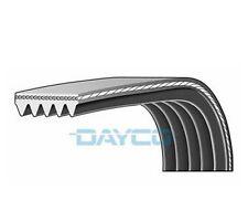 Dayco poly v-côtelé ceinture 5PK1137 5 côtes auxiliaire 1137mm ventilateur alternateur