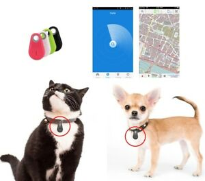 Dispositivo Bluetooth GPS anti-smarrimento per cani e gatti - APP gratuita