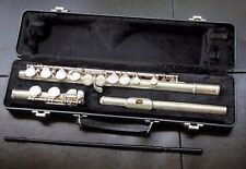Beginner flute with case, cleaning rod and music stand (Ellman's' Music store)