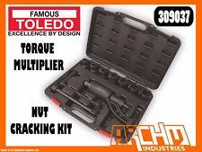 TOLEDO 309037 -  TORQUE MULTIPLIER NUT CRACKING KIT - EXTENSION BAR
