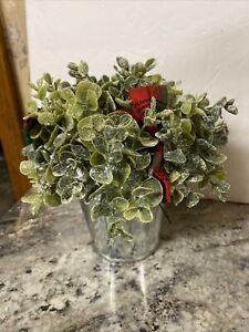 """Eucalyptus 8"""" White Glitter Topiary Berries Christmas Valerie Parr Hill"""