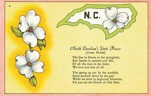 USA 1940's Linen Postcard North Carolina's State Flower Blossom Poem LX8