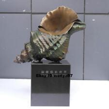 Art Deco Sculpture Conch Sea Snail Home Ornament Bronze Statue