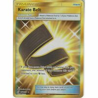 Karate Belt 252/236 Gold Secret Rare Pokemon Energy Card (Unified Minds)