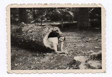 PHOTO Ancienne Jeu Forêt Femme dans un tronc d'arbre Vers 1950 Drôle Curiosité