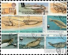 Turkmenistan : 10 Different Stamps Collection