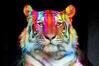 Abstract Tiger - Modern Art Animal Colourful Large Framed Canvas Picture 20x30""