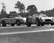 NEW!  Vintage 8 X 10 1964 Daytona Gurney Cobra & Alfa Romeo Giulietta SV