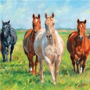 lovely painted herd of horses card suitable for all occasions