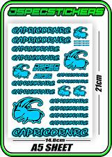 CAPRICORN RC STICKER A5 LAB 1/8 F1 1/10 TESLA ELECTRIC NITRO CAR HARD BLUE B