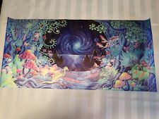 Trippy Psychedelic Art Fabric Poster 13x27.5 inch