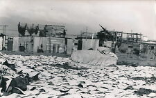 REYKJAVIK c. 1950 - Sècherie de Morues  Islande DIV 4934