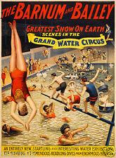 "Barnum and Bailey Grand Water Circus 11x8"" Poster Reprint Swimming Diving"