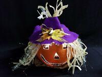 Fiber Optic Electric Lighted Jack-o-Lantern Pumpkin Scarecrow Witch Halloween