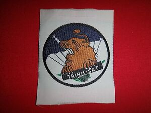 Vietnam War Silk Patch ARVN Special Forces TRINH SAT Reconnaissance Team