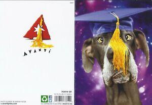 Avanti Press Cross Eyed Dog Wearing Mortar Funny Graduation Card