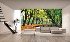 Forest Bridge Wall Mural Photo Wallpaper GIANT DECOR Paper Poster Free Paste