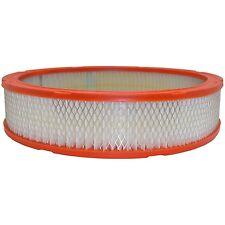 Fram CA305 Air Filter fits 2863317 2863349 L198 AF305 A50084 42044 2044 AF139