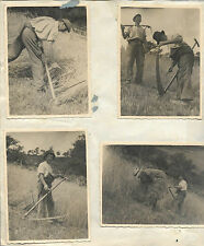 AGRICULTURE Lot  6 PHOTOS ANCIENNES : TRAVAIL A LA FAUX paysans dans les champs