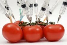 Everything You HAVE TO KNOW about Dangerous Genetically Modified Food, on DVD-R