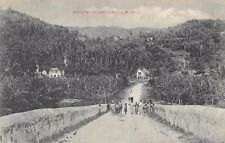 JAMAICA ~ COUNTRY ROAD & SURROUNDINGS, PEOPLE, HOMES ~ used 1911
