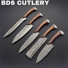 BDS Custom Made Damascus Steel 5 Pieces Professional Kitchen Chef Knife Set