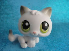 ORIGINAL Littlest Pet Shop little Cat 100 , Shipping with Polish