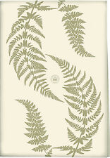 Kew Gardens Green Fern 100% cotton tea towel with hanging tape 70 x 50 cm