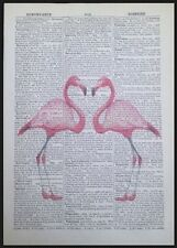 Vintage Pink Flamingo Heart Love Dictionary Print Page Wall Art Picture Bird