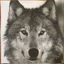 2 single paper napkins decoupage scrapbooking collection Serwetki Animals Wolf