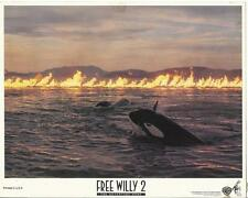 Free Willy 2 The Adventure Home killer whale orcas 1995 movie photo 20257