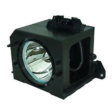 REPLACEMENT LAMP & HOUSING FOR SAMSUNG HLN5065WX , HLN507WX , HLN567W
