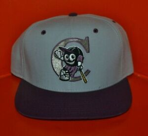 VTG 90s Potomac Cannons Prince William Snapback Baseball Hat Cap New Era USA