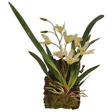 Lucky Reptile - -Plante Blanc - plante Plante en plastique Décoration