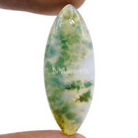 Cts. 24.15 Natural Landscape Moss Agate Cabochon Marquees Cab Loose Gemstone