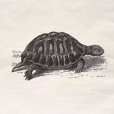 2 single paper napkins Decoupage Craft Collection Serviette Animals Turtle