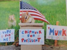 American Chipmunks 100 piece jigsaw puzzle President