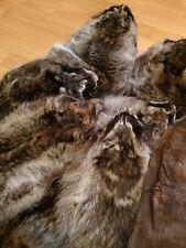 Barktan Raccoon Pelt, Hide, Fur, Hair On