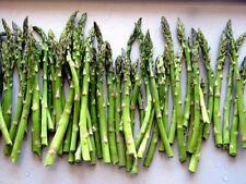 Halbschatten Gemüsesamen für bis -23 ° C) 5 (-30