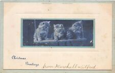 C91/ Cat Animal Postcard Merry Christmas c1910 Cats on a Swing 6