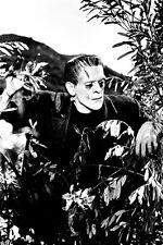 Boris Karloff Frankenstein peering through branches 11x17 Mini Poster