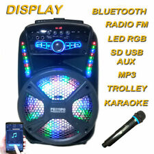 Cassa Amplificata USB SD Karaoke BT 300 Watt Max Trolley microfoni WIFI Acustica