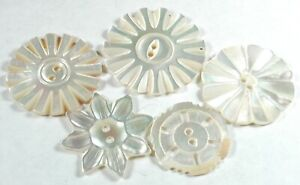 5 Antique Carved Shell Buttons Various Designs - 13/16 to 1 & 1/8""