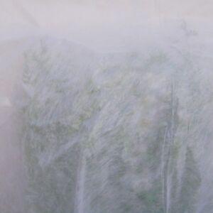Voile d'hivernage blanc 30g/m², 2 mètres de large , vendu au mètre