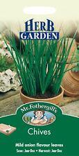 Mr Fothergills - Pictorial Packet - Herb - Chives - 750 Seeds