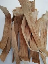 DRIED BANANA LEAVES Pet Supplies BETA FISH ,INDIAN ALMOND substitute 100 Spring