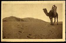 ALGERIE  chamelier cherchant une piste     (67)