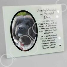 Sadly Missed My Special Dog Photo Frame Tribute Memorial Plaque 4 x 6 Aperture